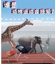 爆笑动物运动会/谁是动物运动会冠军(连载15集)