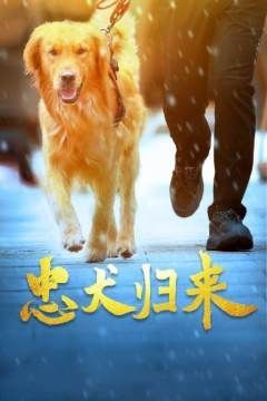 忠犬�w��
