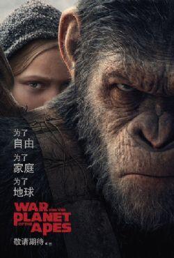 猩球崛起3:�K�O之��/猩球崛起:�K�O�Q��/猿人��霸�穑盒�淳��/猩球大�穑涸沉τX醒/猩球崛起3/人猿猩球3