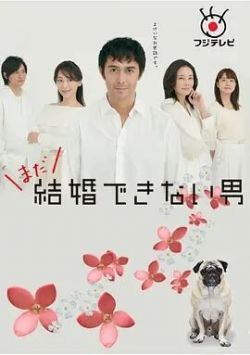 还是不能结婚的男人粤语(连载13集)