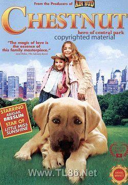 切斯纳特:中央公园英雄